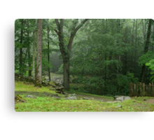 Smoky Mountain Rain Canvas Print