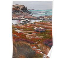 Winterscape, Cape Douglas Poster