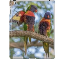 Who Is A Pretty Boy iPad Case/Skin