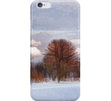 Colorful Winter Day on the Lake iPhone Case/Skin