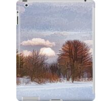 Colorful Winter Day on the Lake iPad Case/Skin