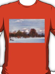 Colorful Winter Day on the Lake T-Shirt