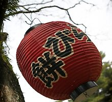 Nara lantern by Kyra  Webb