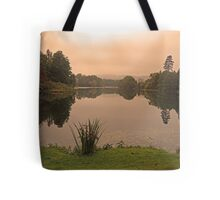 Peach Sky at Great Witley Tote Bag