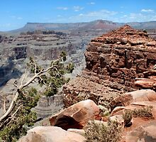 The Grand Canyon by DJ Florek
