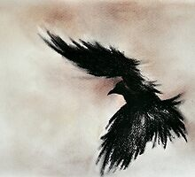 Raven Flying Charcoal Black and White Art by ArtMK