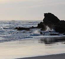 Silver Shores by KLMcreative
