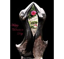 Kissing Birds With Rose (Valentines) Photographic Print
