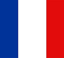 flag of france by tony4urban