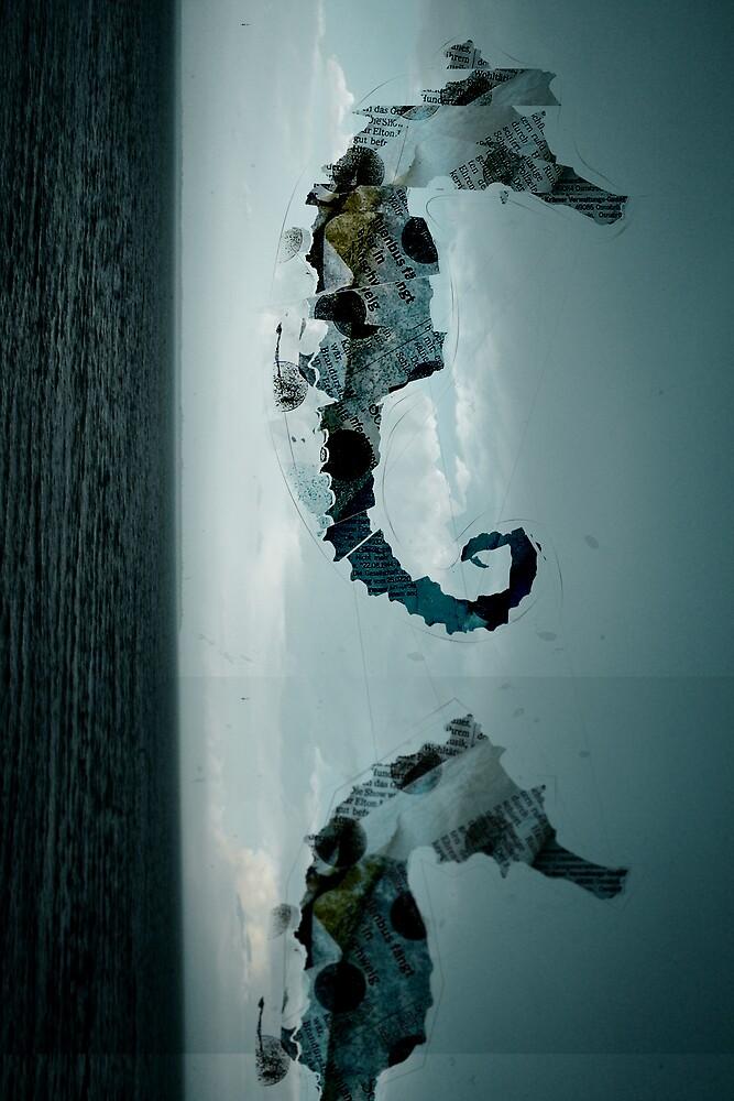Sea horse film by Aleksandr Pasevin