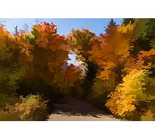 Sunny, Warm and Colorful - Autumn Impressions Photographic Print