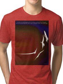 Spirit Flight Tri-blend T-Shirt