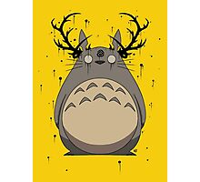 Totoro True Detective Photographic Print