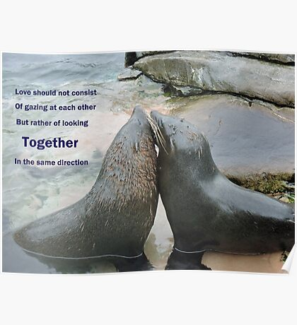 Seal Love: In the Same Direction Poster