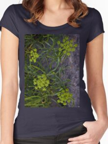 Rock Samphire, Inishmore, Aran Islands Women's Fitted Scoop T-Shirt