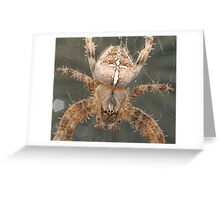 Face to Face. Greeting Card
