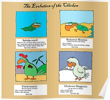 Evolution of the chicken Poster