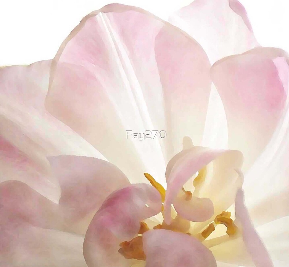 Whisper by Fay270