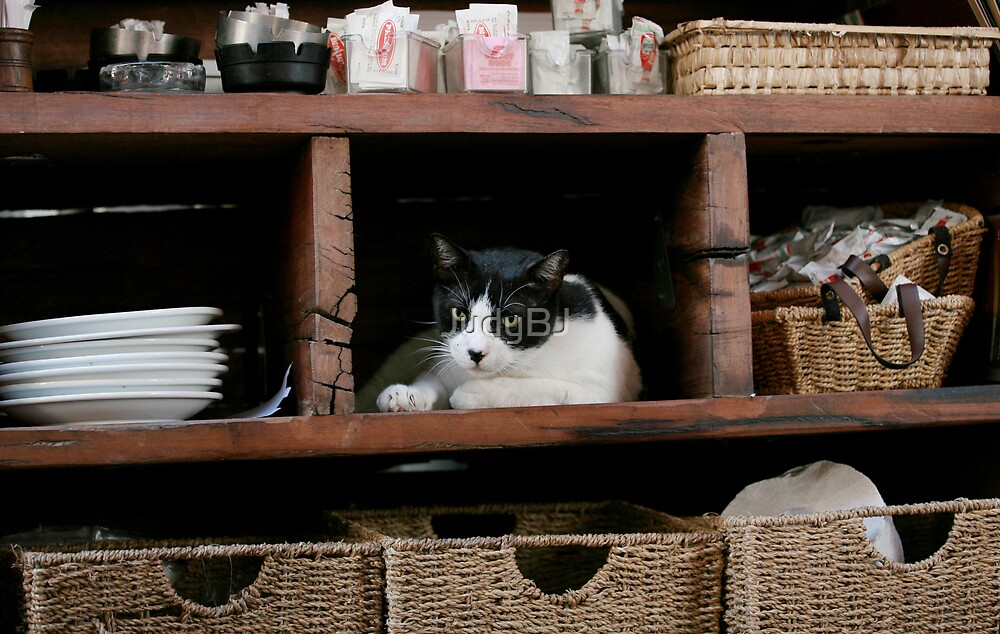 Outdoor restaurant's shelves :) by JudyBJ