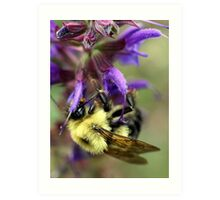 Upside Down Bee Art Print