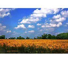 Fair Weather Cumulus Photographic Print