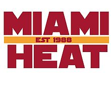 Miami Heat by metacovert