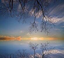Quiet times.  by DaveBassett