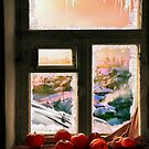 Frosted Windowsill by Igor Zenin