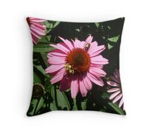 Lunch Time Amateur Style Throw Pillow