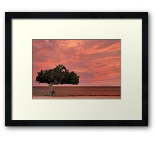 Divi Divi Sunset Framed Print