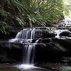 Leura Cascades by Jeff D Photography