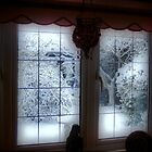 My Room...My Winter View... by naturelover