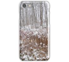 2014 First snow storm iPhone Case/Skin