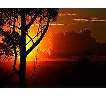 """"""" Gum silhouette""""... Photographic Print"""