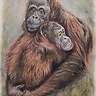 Orangutan mum and baby by Gillian Ussher
