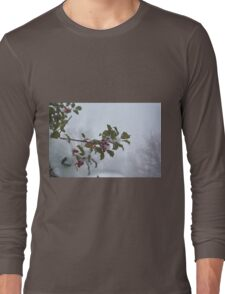 Snow on the holly Long Sleeve T-Shirt