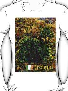 jGibney Ireland 1999 Kerry Lake District Ireland The MUSEUM Red Bubble Gifts T-Shirt