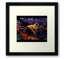 Night Raven  Framed Print