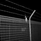 fence for the kids by Nenad  Njegovan
