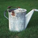 Watering Can by DragonRoseArt