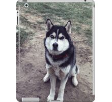 00355 iPad Case/Skin