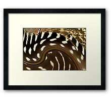 Twirled Feathers Framed Print