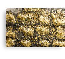 Gold coins Canvas Print