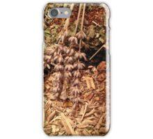 Freshly Dried Herbs  iPhone Case/Skin