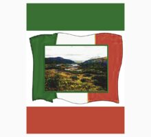 jGibney Ireland 1999 Kerry Lake District Ireland Flag T-Shirt wb The MUSEUM Red Bubble Gifts by TheMUSEUM