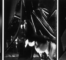 Twin Horses in Triptych 1983 by Cathie Brooker