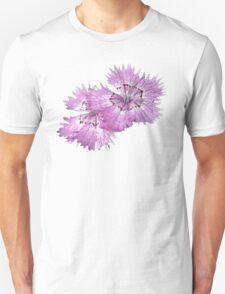 Dianthus (T-Shirt), light T-Shirt