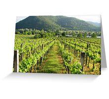 Wachau Vineyard  Greeting Card