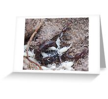 Scorpion and babies Greeting Card