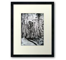 Bibbulmun Track Framed Print